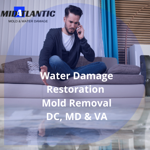 water damage services near me