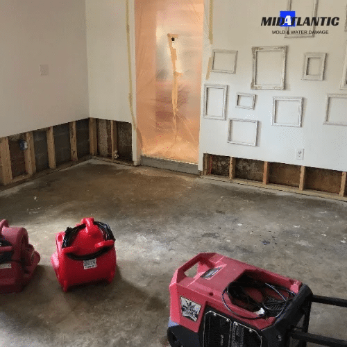 water damage cleanup near me